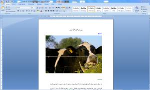 پروژه کار آفرینی پرورش گاو و گاوميش