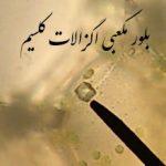 بلور_مکعبی اگزالات کلسیم