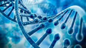 جزوه ژنتیک ۱ مریم رحیمی