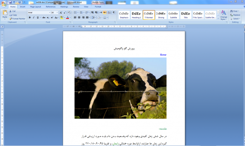 <span>پروژه کار آفرینی پرورش گاو و گاوميش</span>