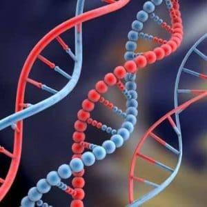 نمونه سوالات امتحانی درس ژنتیک ۱ استاد مریم رحیمی رشته میکروبیولوژی